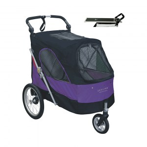 Buggy Extra Luxe L Viola